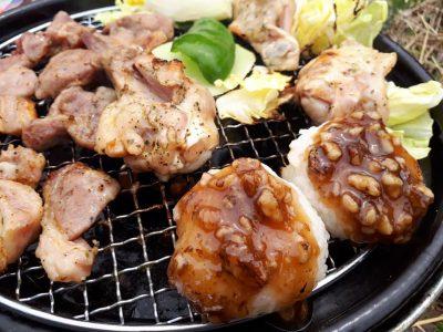 おうち焼肉 下味付き 冷凍肉