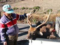 猟師と駆除された鹿