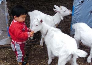 (Photo:自然の恵みを肌で感じられる子に)