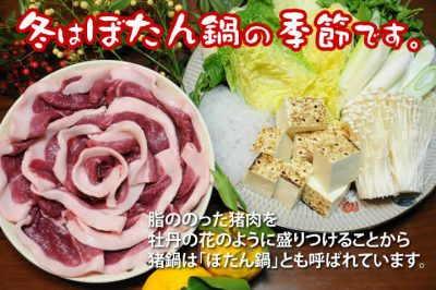 飯田市 ぼたん鍋 イノシシ 猪肉 囲炉裏